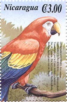 stamp Macaw