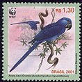 stamp Macaw2