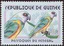 stamp Poicephalus2