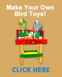 Makeyourownbirdtoys.com