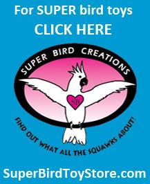 Superbirdtoystore.com