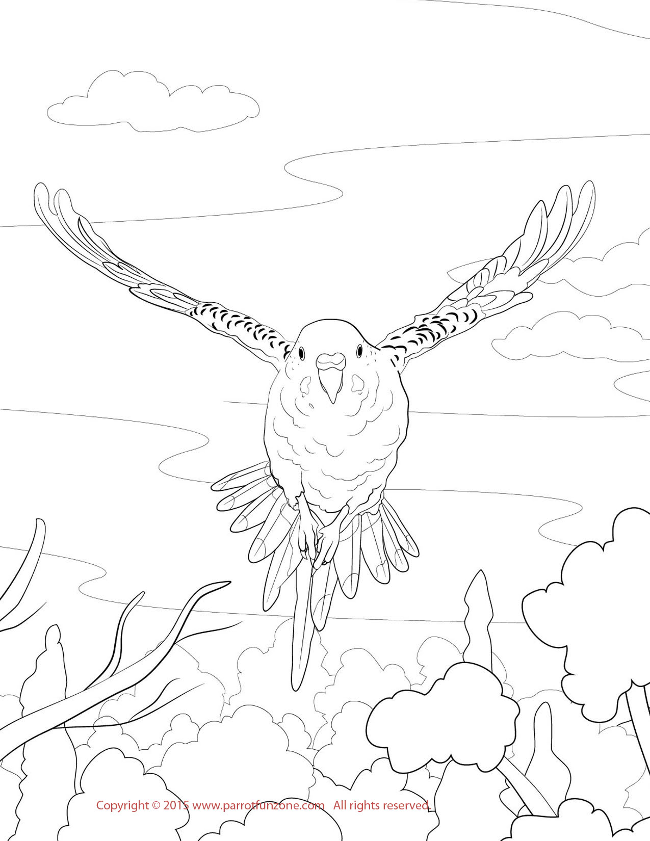 galapagos island coloring pages - photo #31